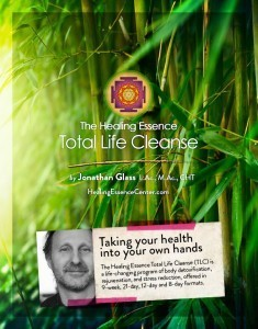 Healing Essence Total Life Cleanse Program