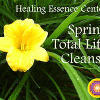 Spring Total Life Cleanse